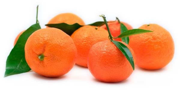 О возврате более 20 тонн мандарин, зараженных опасным вредителем