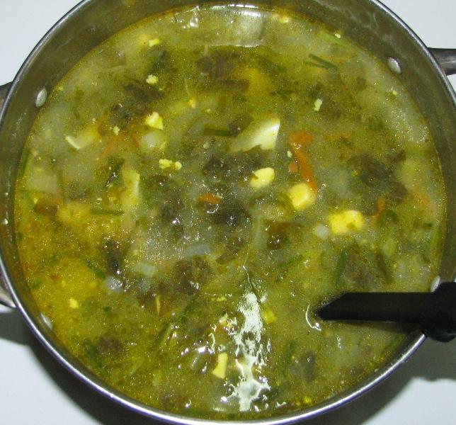 суп щи рецепт пошаговый с фото